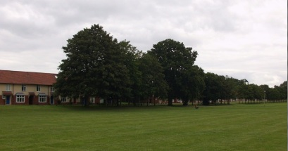 Houses facing Rugby pitch
